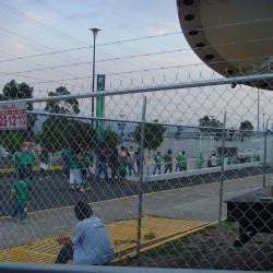 Mallas de Morelia S.A de C.V img-5