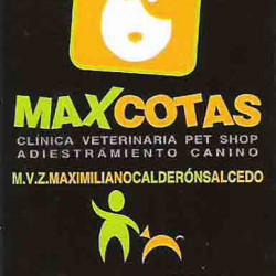 Maxcotas img-0