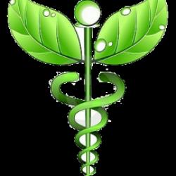 Homeopata y Acupunturista Ema Figueroa A.C. 6995/11 img-3