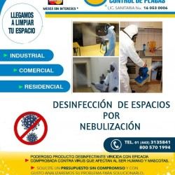 Ormega Control de Plagas img-8