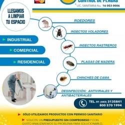 Ormega Control de Plagas img-10