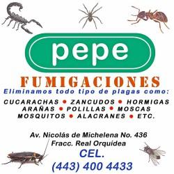Pepe Fumigaciones img-0
