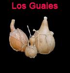 Logo de Restaurante Los Guajes