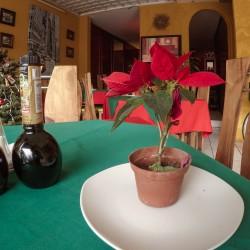 Restaurante Palermo img-1