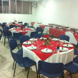 Salón de Fiestas Chapultepec img-2