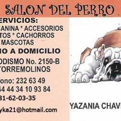 Salon del perro img-0