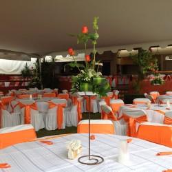 Salón Jardín Hacienda los Itzicuaros img-17