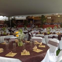 Salón Jardín Hacienda los Itzicuaros img-16