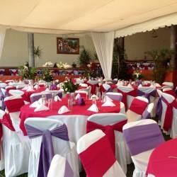 Salón Jardín Hacienda los Itzicuaros img-9