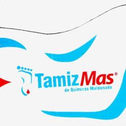 TamizMas Michoacán img-0