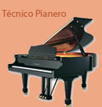 Logo de Técnico Pianero