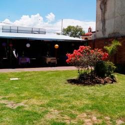 Terraza & Jardín San Mateo img-3