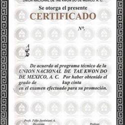 Unión Nacional de Taekwondo img-0