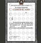 Logo de Unión Nacional de Taekwondo