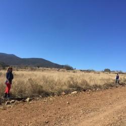 Venta de Terrenos con Facilidades de Pago img-4