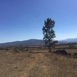Venta de Terrenos con Facilidades de Pago img-16
