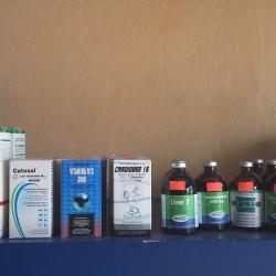 Veterinaria El Canelo img-5
