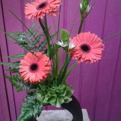 Vida Flor img-16