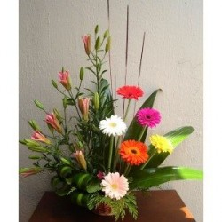 Vida Flor img-2