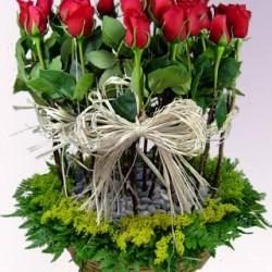 Vida Flor img-3