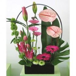 Vida Flor img-24