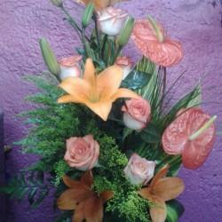 Vida Flor img-14