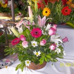 Vida Flor img-0