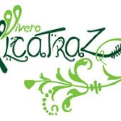Vivero Alcatraz img-1