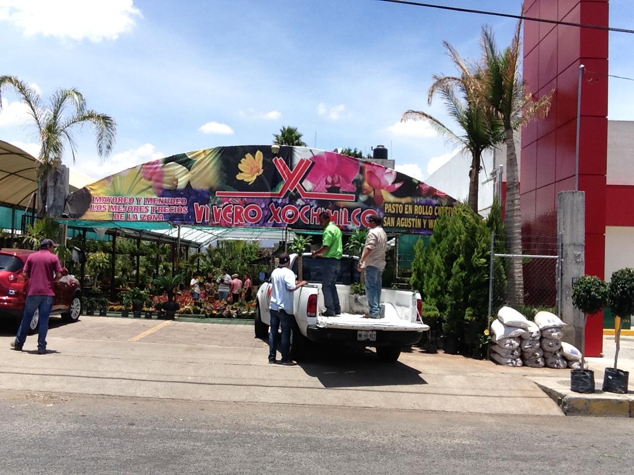 Vivero xochimilco en morelia Jardineria xochimilco