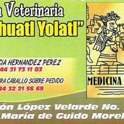 Yoa Zihuatl Yolatl  Clínica Veterinaria img-0