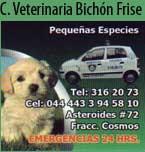 Logo de Bichon Frise Clínica Veterinaria