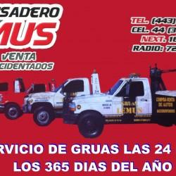 Deshuesadero Lemus img-2