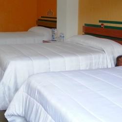 Hotel Las Américas img-11